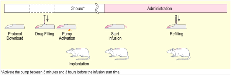 Mouse Infusion